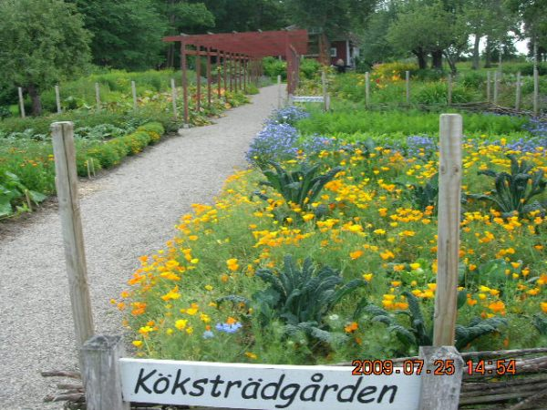 Turist i Sörmland 062