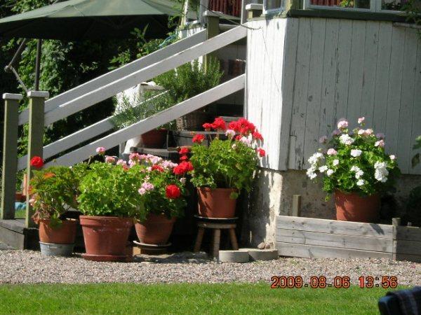 Turist i Sörmland 316