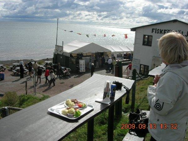 Onsala, Sydskåne och Marstrand sensommaren 2009 081