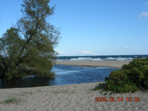 Onsala, Sydskåne och Marstrand sensommaren 2009 115