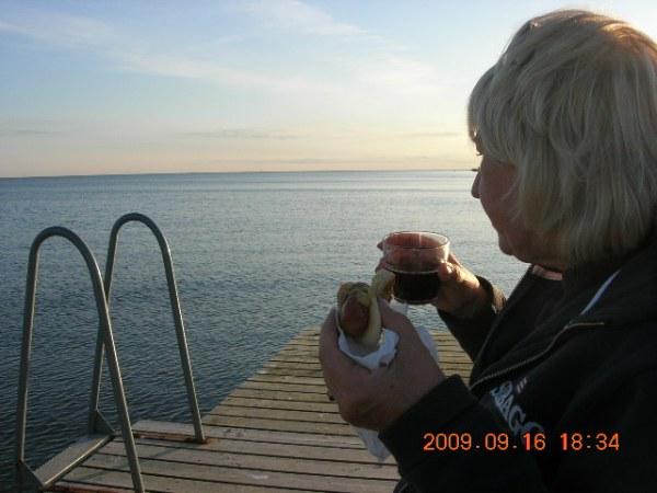 Onsala, Sydskåne och Marstrand sensommaren 2009 325