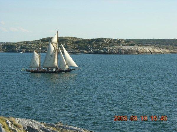 Onsala, Sydskåne och Marstrand sensommaren 2009 460