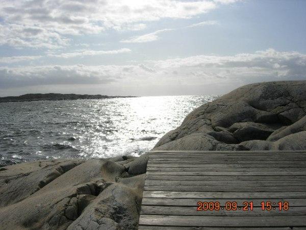Onsala, Sydskåne och Marstrand sensommaren 2009 549